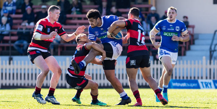 Newtown Jets front-rower Malakai Houma shows great determination as he strives to break through the North Sydney Bears defence last Saturday. Photo: Mario Facchini, mafphotography